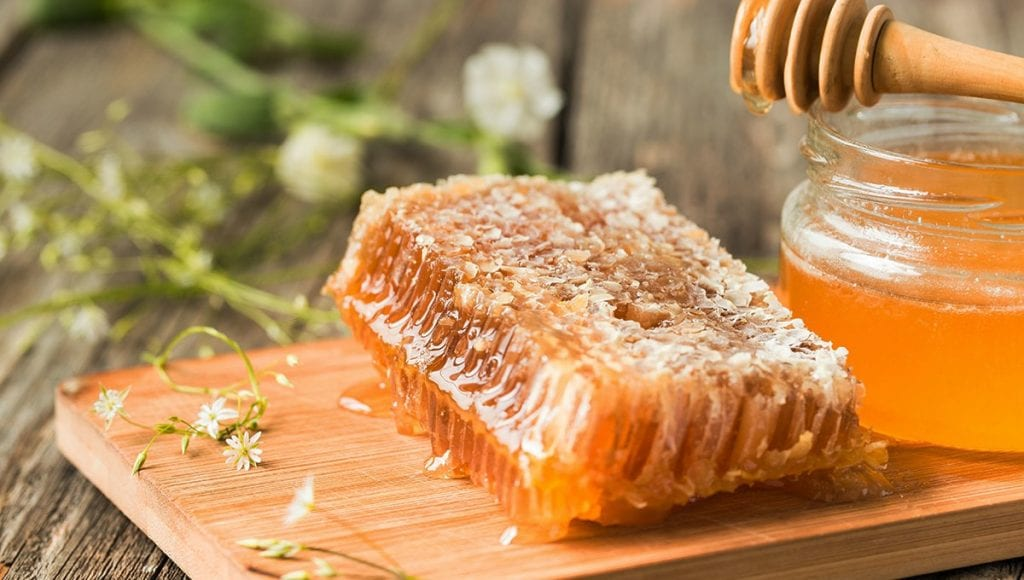 Benefits Of Feeding Your Dog Raw Honey