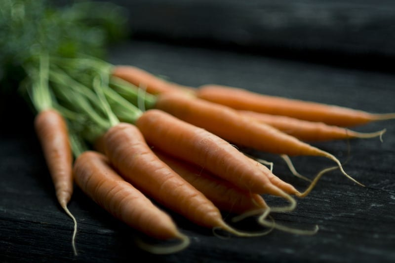 Healthy Thanksgiving Foods Your Dog Will Love: Carrots